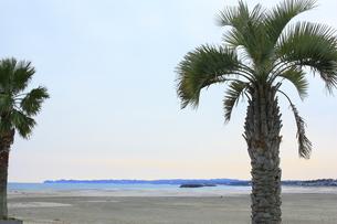 海岸の写真素材 [FYI00455109]
