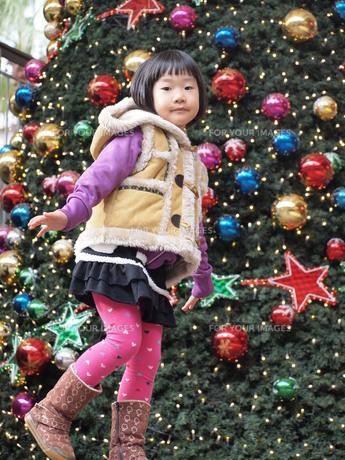 クリスマスツリーの写真素材 [FYI00455661]