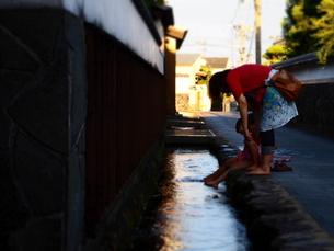 城下町の水路にての写真素材 [FYI00455684]