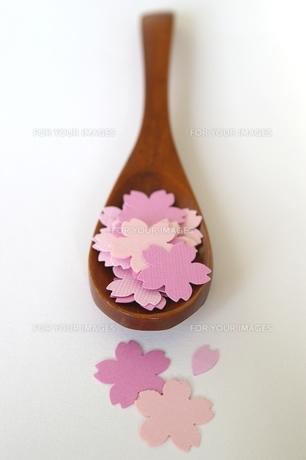 木製スプーンと桜(縦)の写真素材 [FYI00455814]