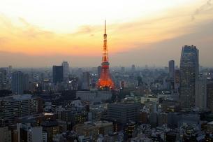 東京の夕景の素材 [FYI00455896]