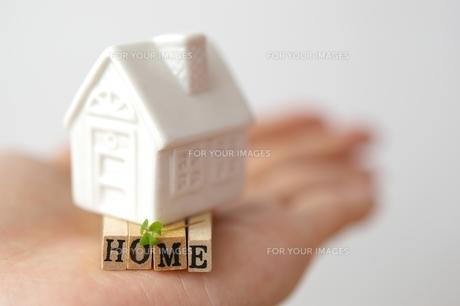 HOMEの素材 [FYI00455908]