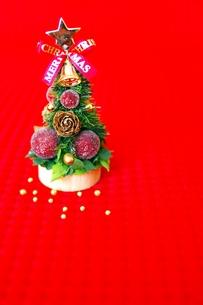 クリスマスツリーの写真素材 [FYI00455919]