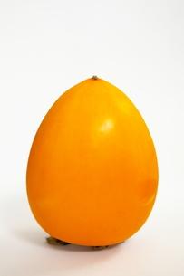 柿の素材 [FYI00455944]
