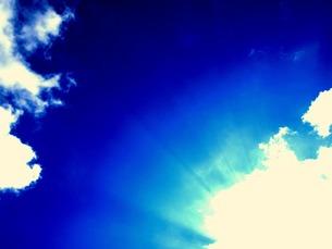 冬の日差しの写真素材 [FYI00456040]