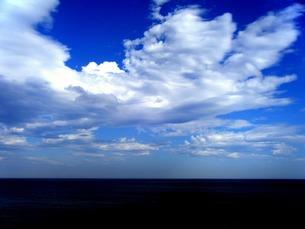 夏の水平線の写真素材 [FYI00456042]