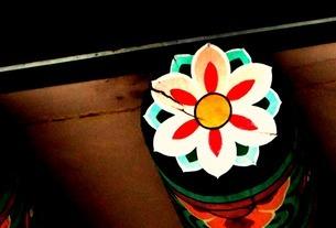 花の素材 [FYI00456087]