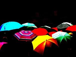 傘の写真素材 [FYI00456101]