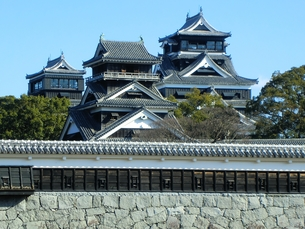 熊本城天守閣の写真素材 [FYI00456121]