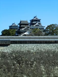 熊本城天守閣の写真素材 [FYI00456124]