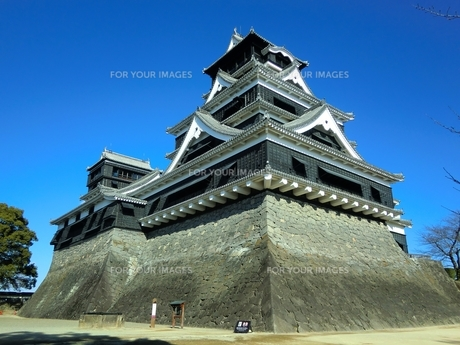 熊本城天守閣の写真素材 [FYI00456139]