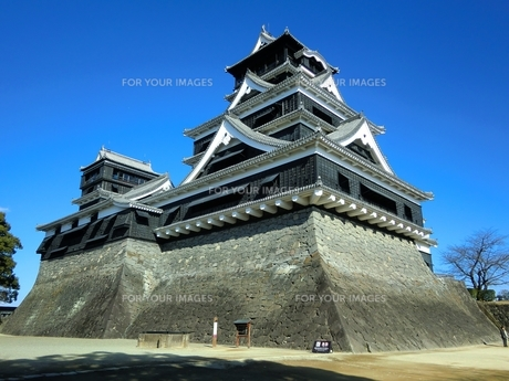 熊本城天守閣の写真素材 [FYI00456140]