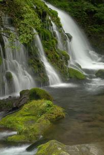 流れ落ちる元滝伏流水の写真素材 [FYI00456150]