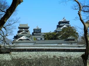 二の丸公園から望む熊本城天守閣と宇土櫓の写真素材 [FYI00456160]