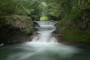 青葉の頃の伏伸(ふのし)の滝の写真素材 [FYI00456171]