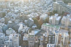 高台から見下ろす東京の写真素材 [FYI00456430]