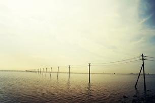 海と電線の素材 [FYI00456547]