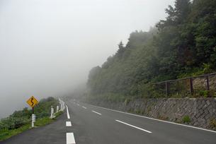 霧の山道の写真素材 [FYI00456739]