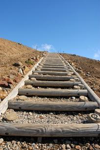 丸太の階段の写真素材 [FYI00456740]