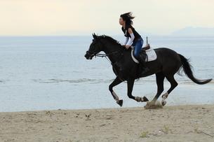 海で乗馬の写真素材 [FYI00456857]