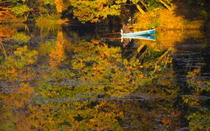 紅葉の湖の写真素材 [FYI00456882]