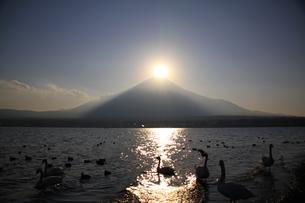 ダイヤモンド富士の写真素材 [FYI00456910]