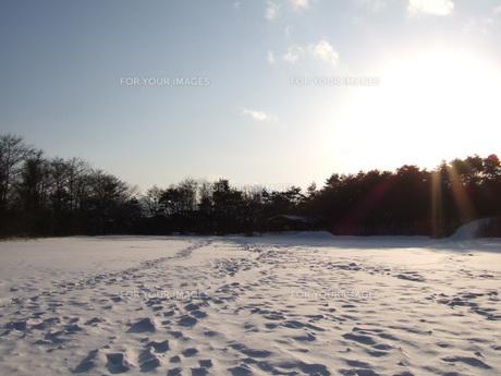 雪景色の写真素材 [FYI00456933]