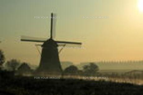 朝靄の風車の写真素材 [FYI00456972]
