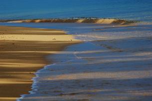 渚を照らす光の写真素材 [FYI00457005]