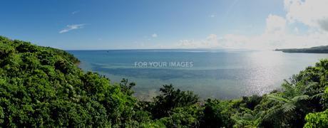 亜熱帯の海とジャングル2の素材 [FYI00457032]