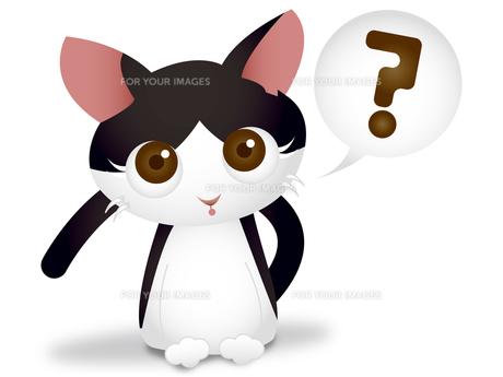 首をかしげる猫の素材 [FYI00457196]