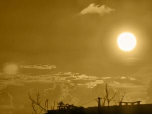 夏のぼやけた夕陽の写真素材 [FYI00457199]