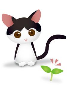 猫と芽ばえの写真素材 [FYI00457226]