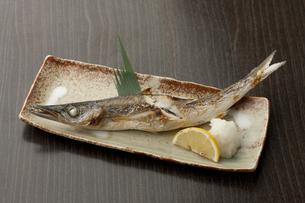 焼き魚 カマスの素材 [FYI00457236]