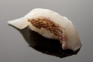 にぎり寿司 真鯛の素材 [FYI00457239]