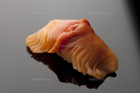 にぎり寿司 赤貝の素材 [FYI00457250]