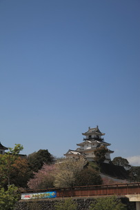 掛川城の写真素材 [FYI00457422]