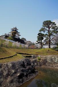 掛川城の写真素材 [FYI00457423]