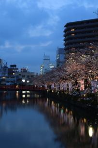 小田原の夜の写真素材 [FYI00457449]
