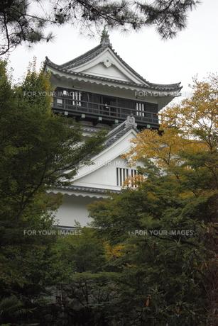岡崎城の写真素材 [FYI00457462]