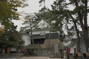 岡崎城の写真素材 [FYI00457466]