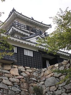 浜松城の写真素材 [FYI00457481]
