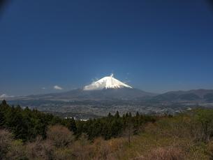 足柄峠からの富士山の写真素材 [FYI00457524]