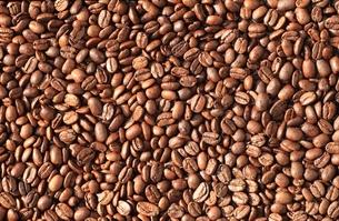 コーヒー豆のテクスチャの写真素材 [FYI00457623]