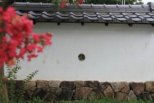 城下町の風景の素材 [FYI00458673]