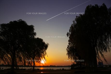 渡良瀬遊水地の夕陽の写真素材 [FYI00458978]