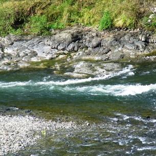 四万十川の写真素材 [FYI00458999]