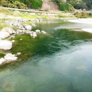 四万十川の写真素材 [FYI00459002]