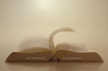 辞書の写真素材 [FYI00460150]
