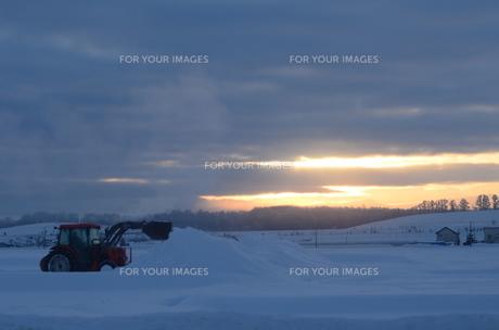 夜明けの除雪の素材 [FYI00460687]
